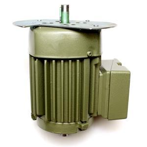 Motor TMP (GB-33)